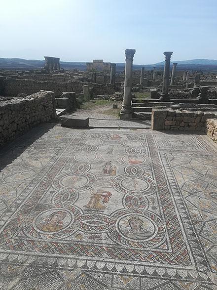Volubilis - Mosaique Voyage au Maroc Ziléo