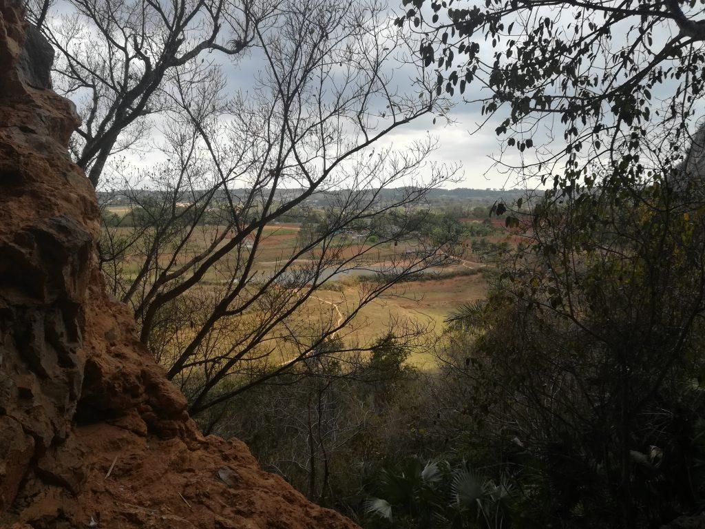 cueva de la vaca, vallée de vinales Ziléo